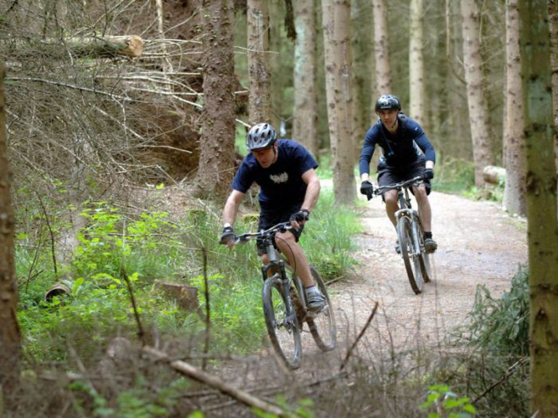 Sherwood Pines Forest - 14 mins