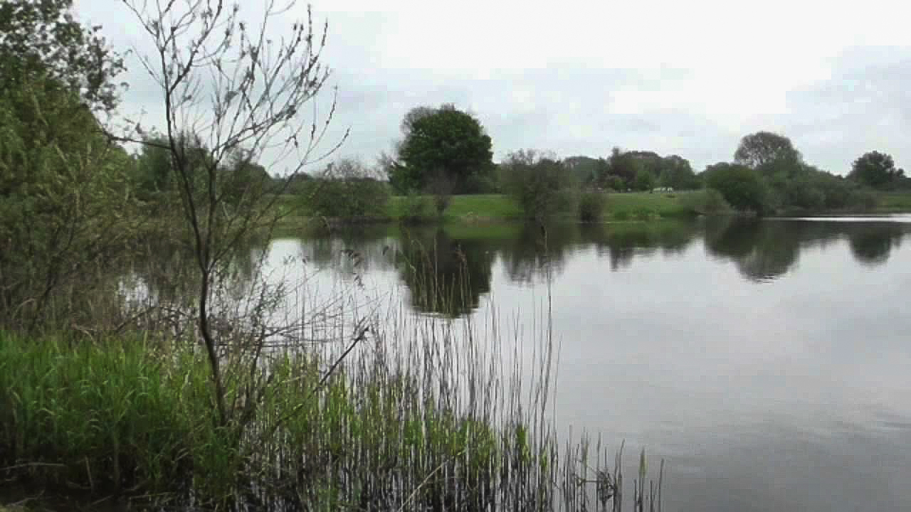 Smeatons-Lakes-Fishery